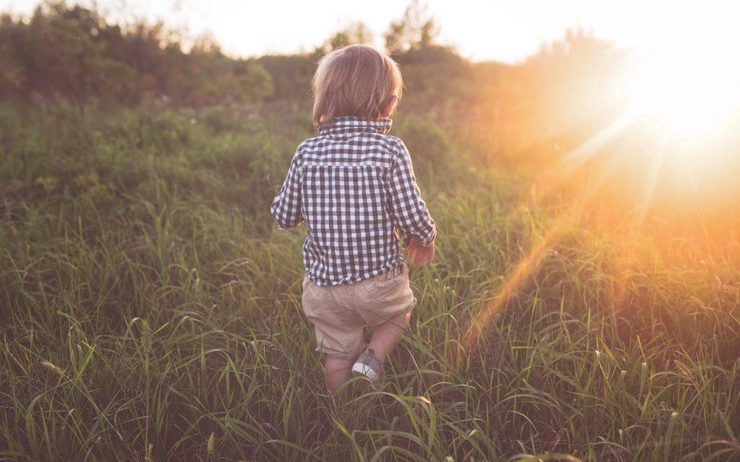 Les 4 plantes douces des enfants